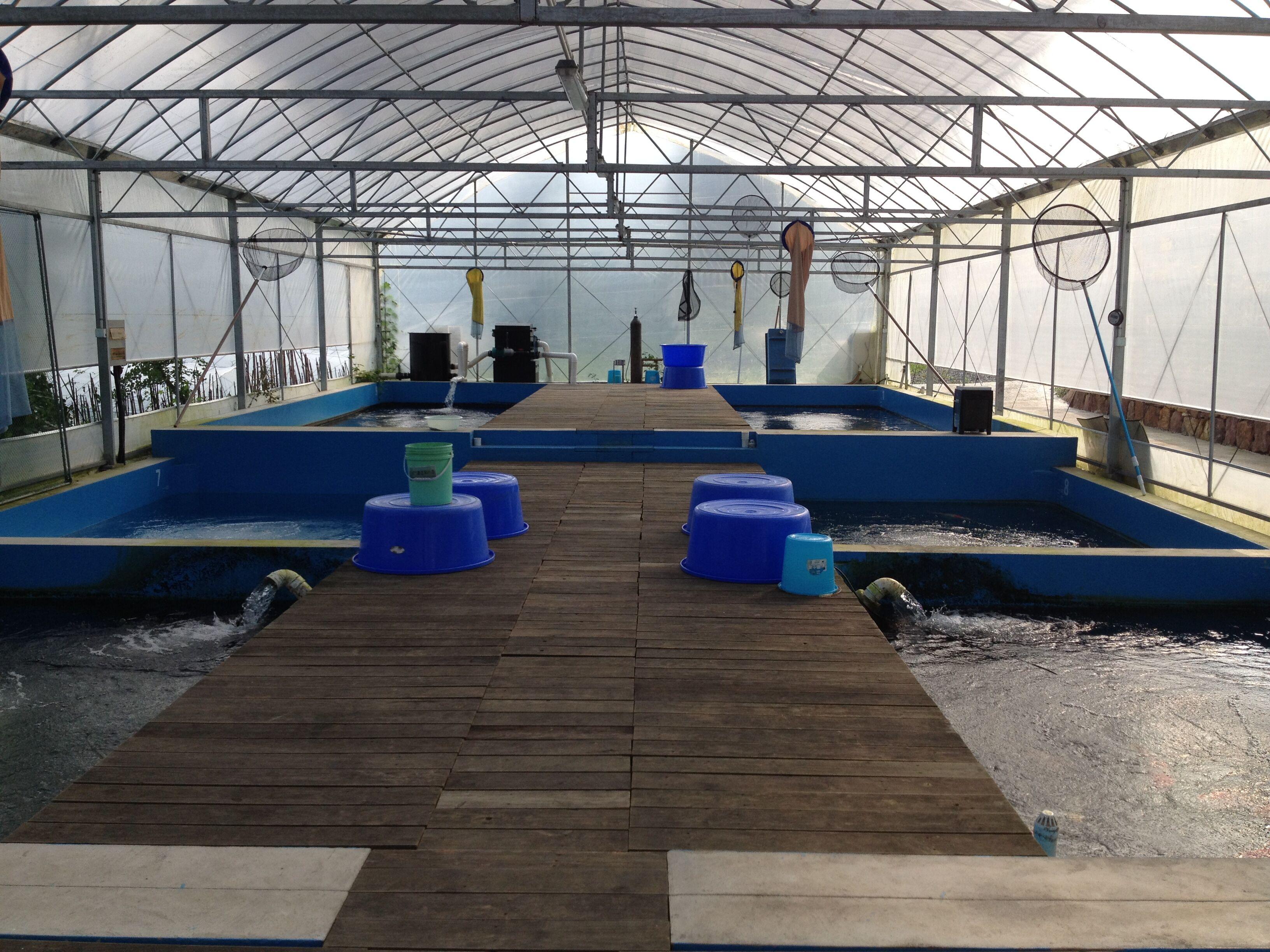 养殖渔池 (2)aquaculture pond